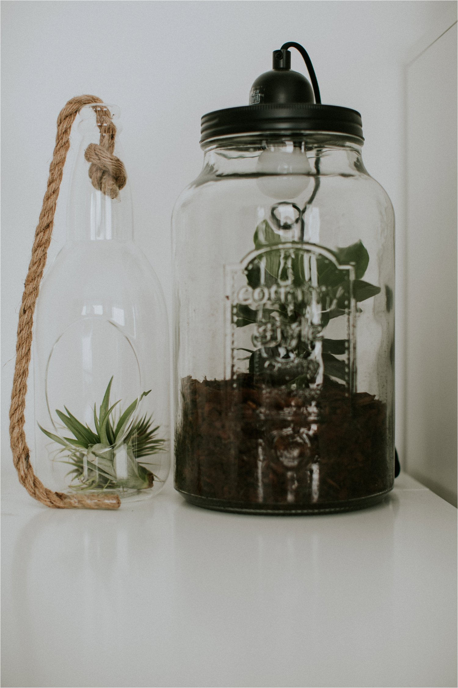 Bloemen en planten aan huis met Greetz